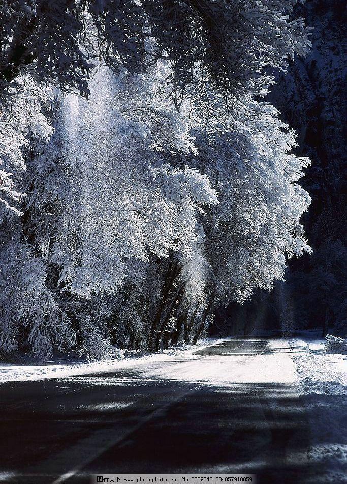 自然丽景素材 自然 丽景 风景 雪景 大树 树 冬天 冰 自然景观 自然