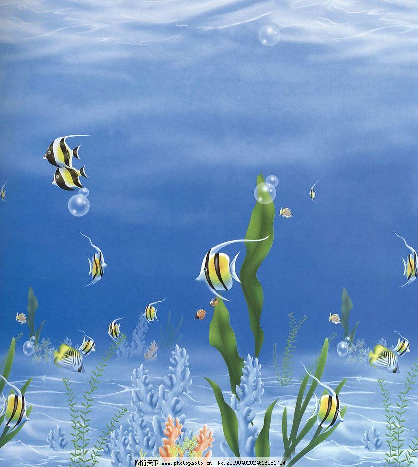 海底风光图片