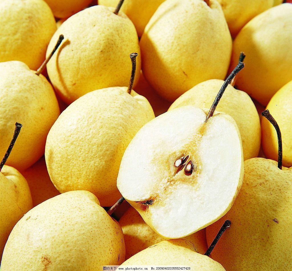砀山梨 梨 生物世界 水果 摄影图库 400dpi jpg
