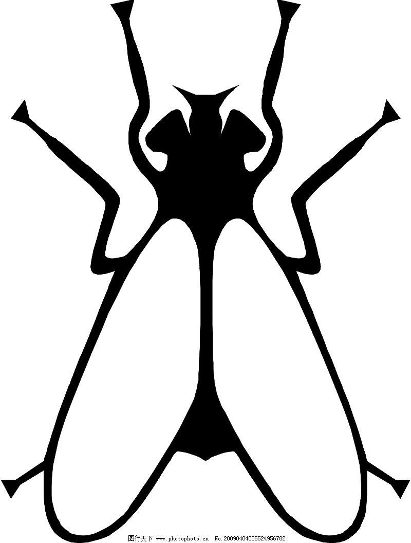 昆虫蝴蝶0839_其他_矢量图_图行天下图库