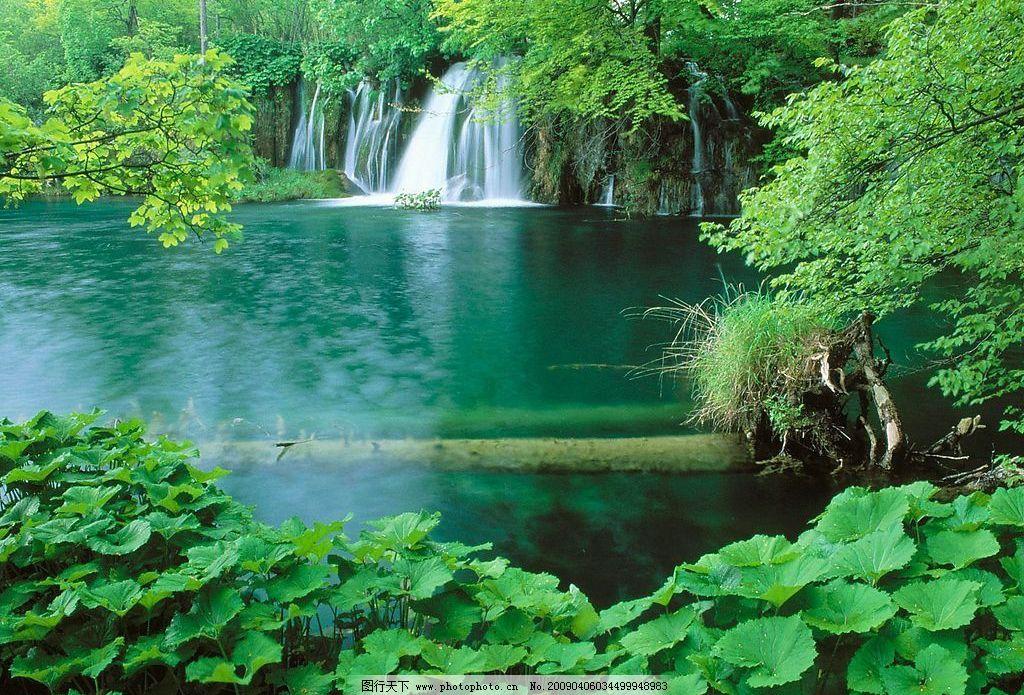 瀑布 绿水 绿树 自然景观 山水风景 摄影图库 72dpi jpg