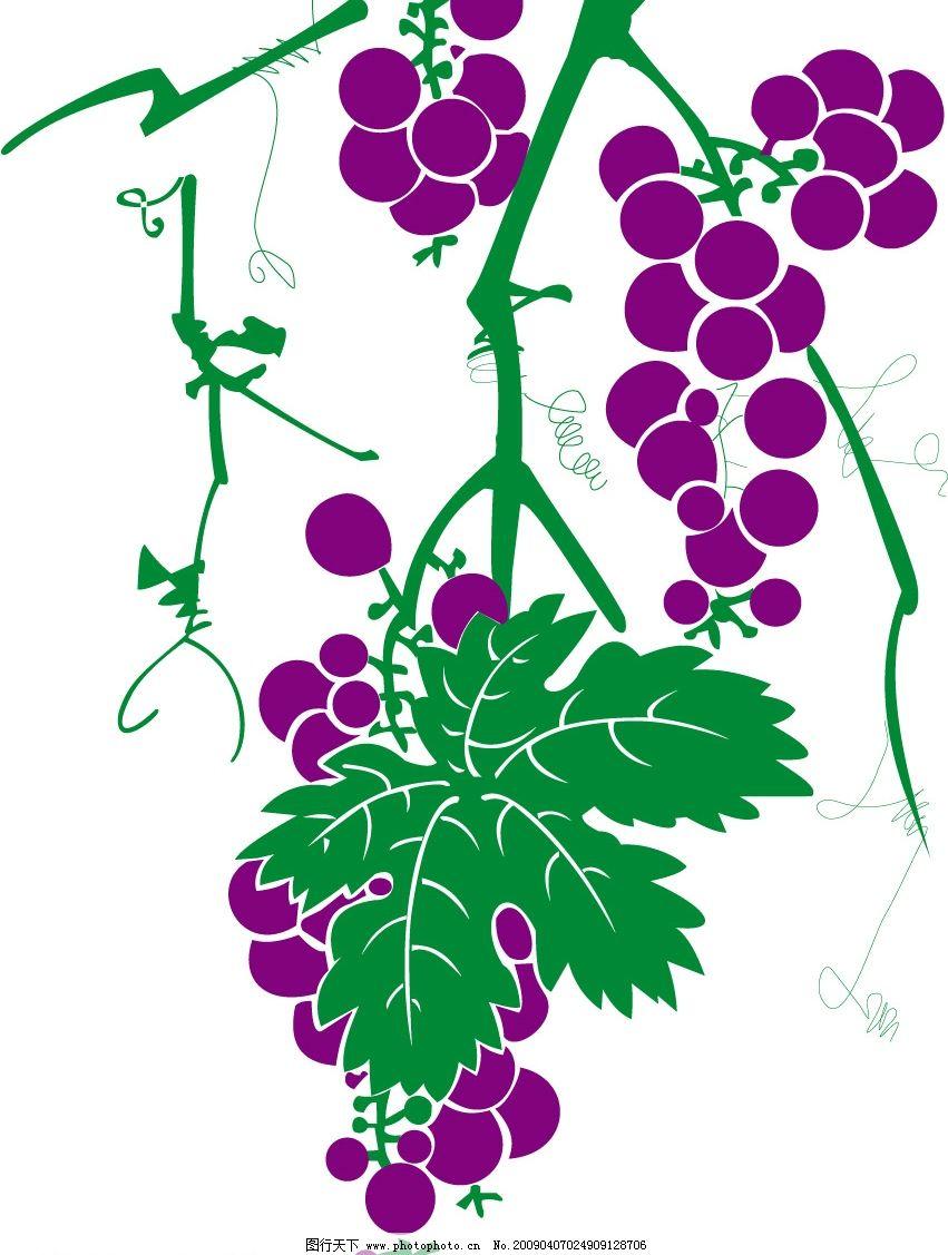 葡萄矢量图 葡萄 适量 素材 水果 生物世界 矢量图库 cdr