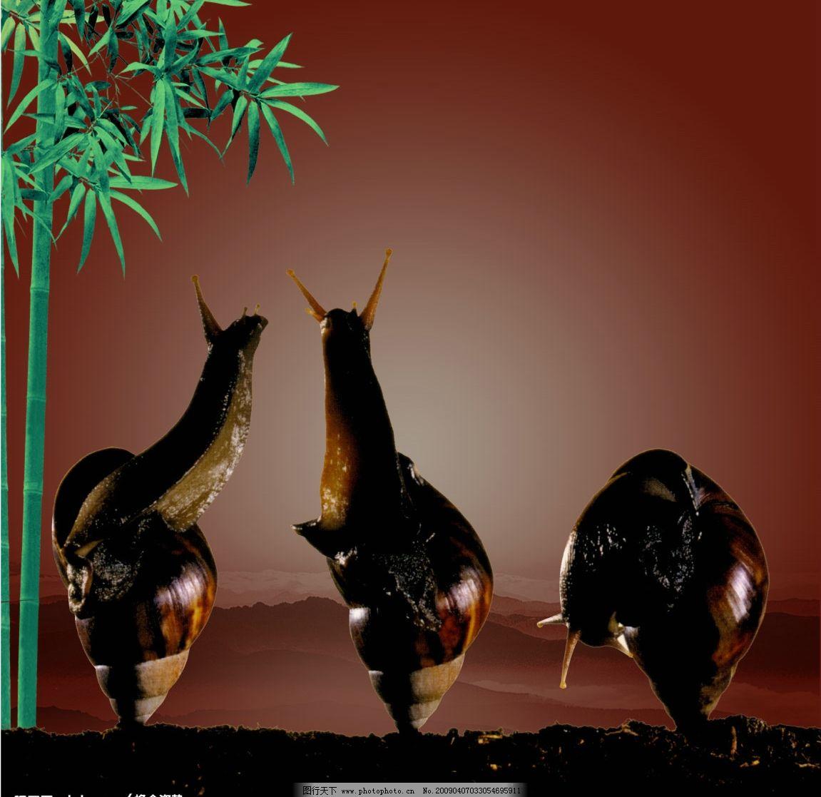 晨曲 蜗牛 竹叶 褐色 动物 山脉 psd分层素材 源文件库 300dpi psd
