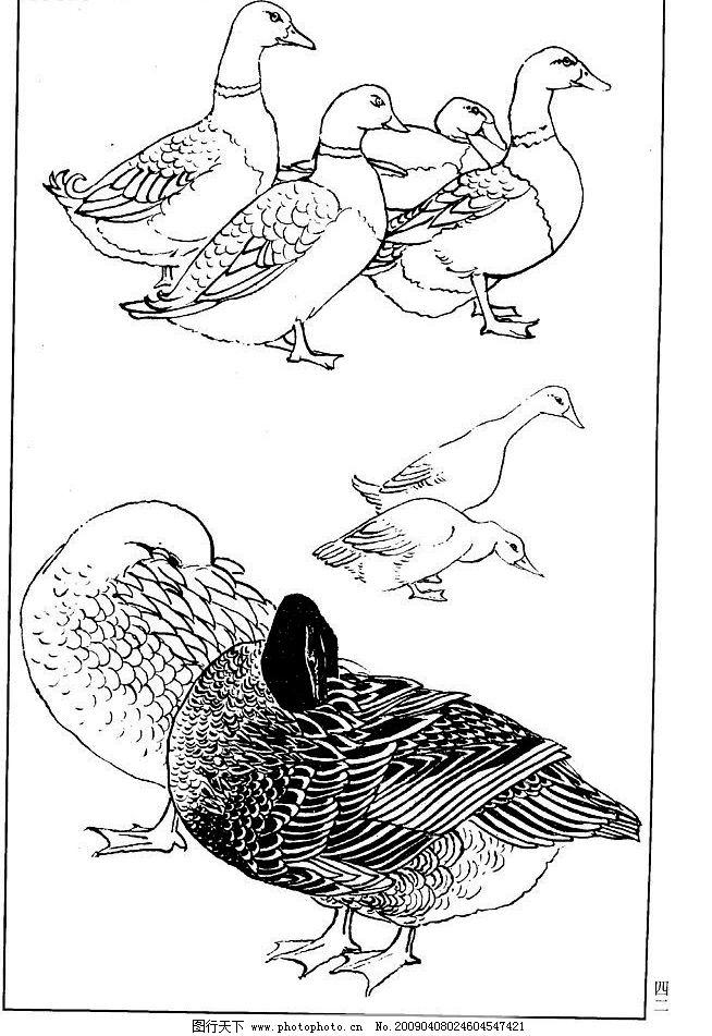 鸭子黑白矢量图