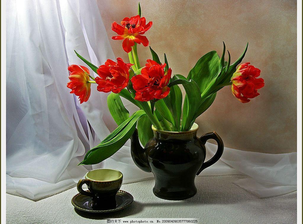 陶罐和花 静物 绘画静物 陶罐 杯子 花卉 衬布 生物世界 花草 摄影
