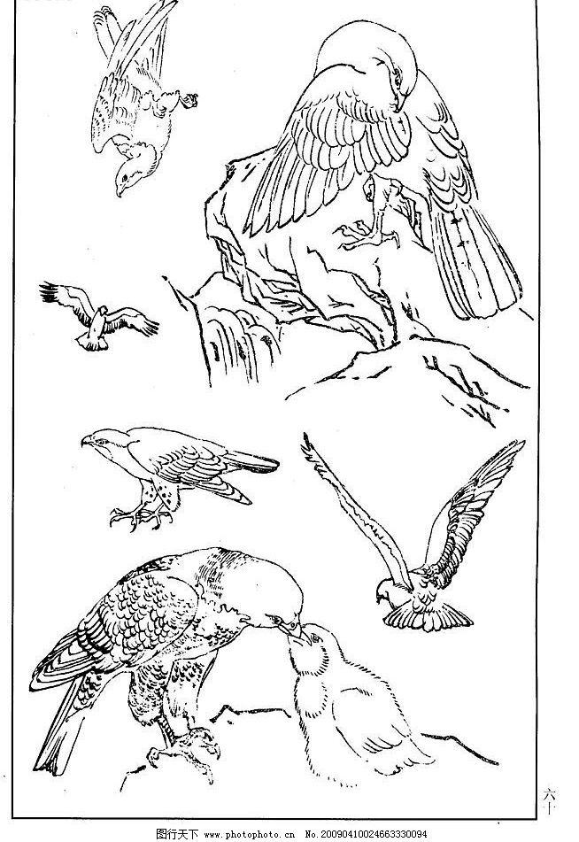 鸟类 鸟兽 花鸟 小鸟 白描 线描 黑白稿 绘画 工笔花鸟-白描花鸟图 桃花
