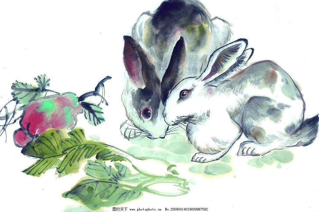 生肖图 水墨画 兔子 文化艺术 绘画书法 设计图库 72dpi jpg