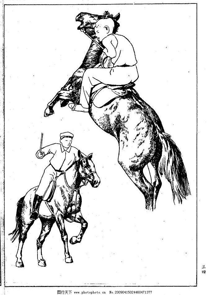 百马图34 百马谱 白马 白描 线描 黑白稿 手绘 绘画 动物