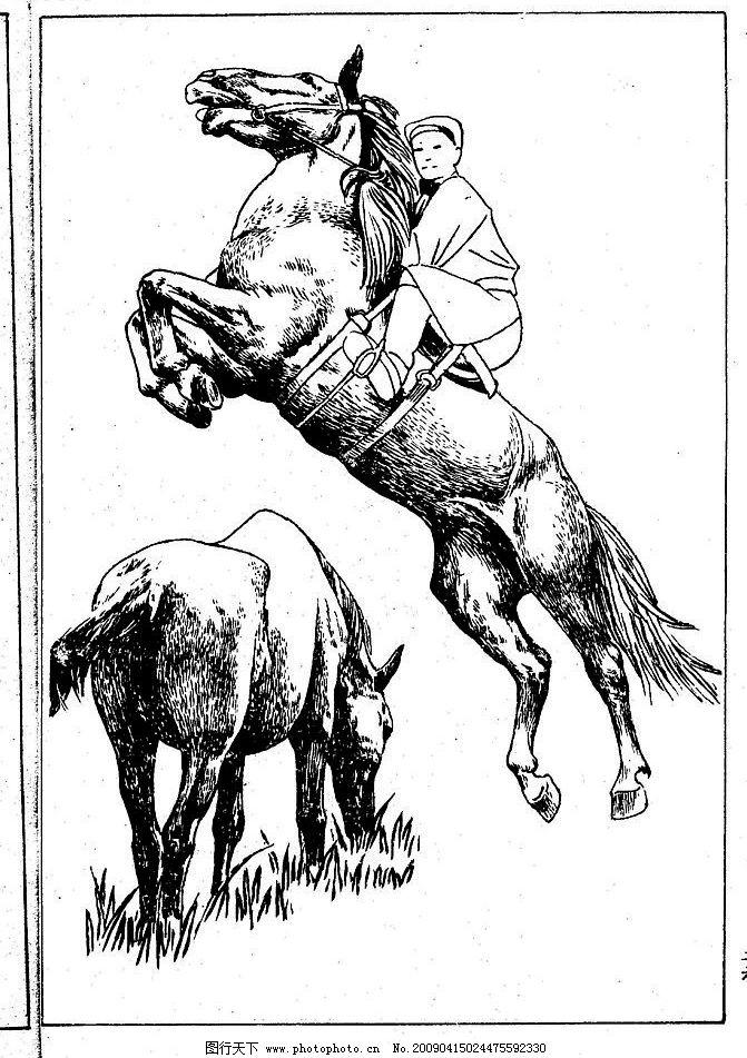 百马图26 百马谱 白马 白描 线描 黑白稿 手绘 绘画 动物