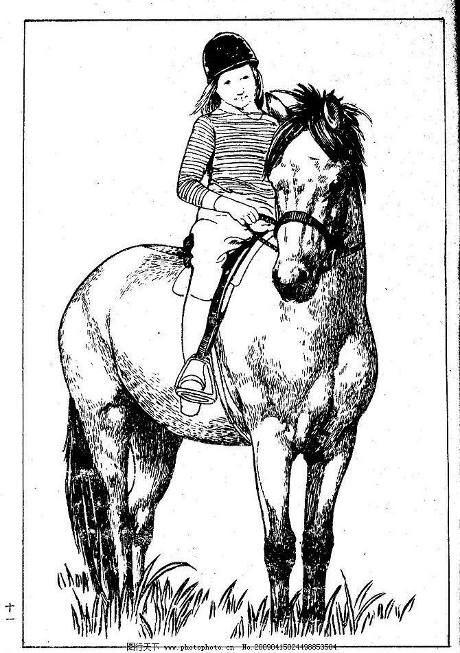 百马图11 百马谱 白马 白描 线描 黑白稿 手绘 绘画 动物
