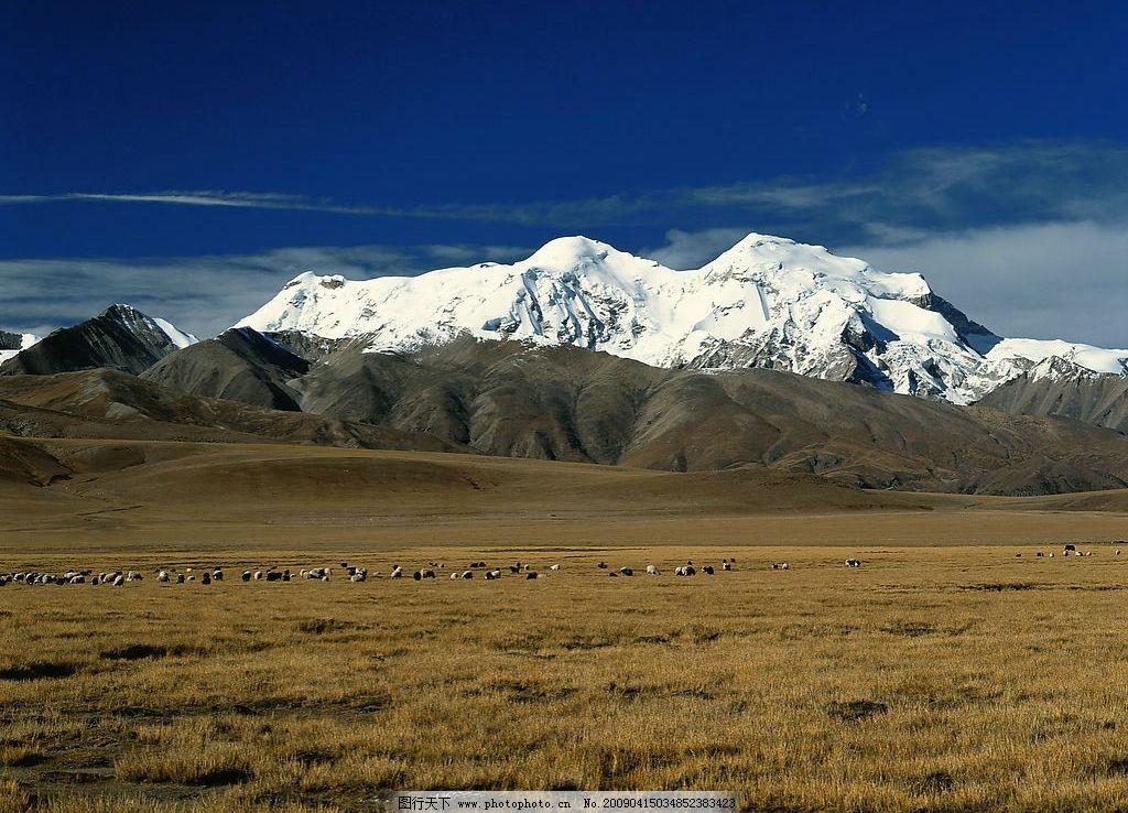 雪山的视频高原一呼百应风景图片