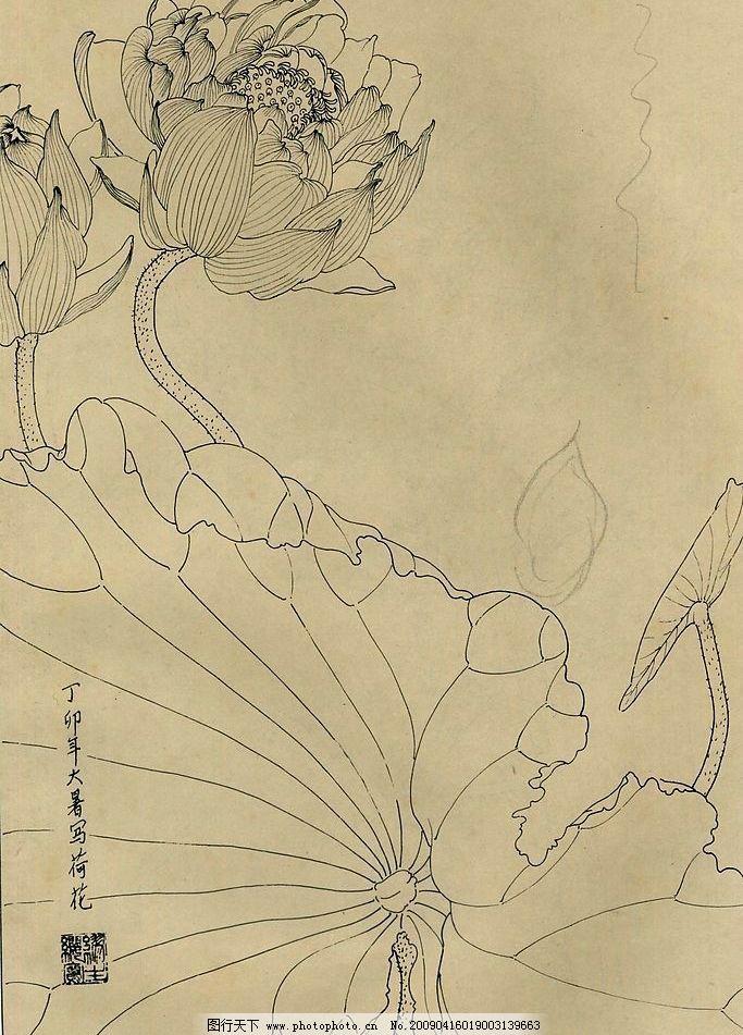 百花图谱 荷花 百花 花草 花 白描 线描 黑白稿 绘画 工笔 花谱 杨柳