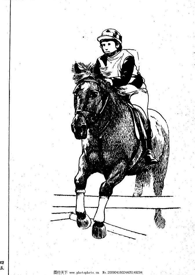 白描 线描 黑白稿 手绘 绘画 动物 野马 骏马 百马图 生物世界 野生
