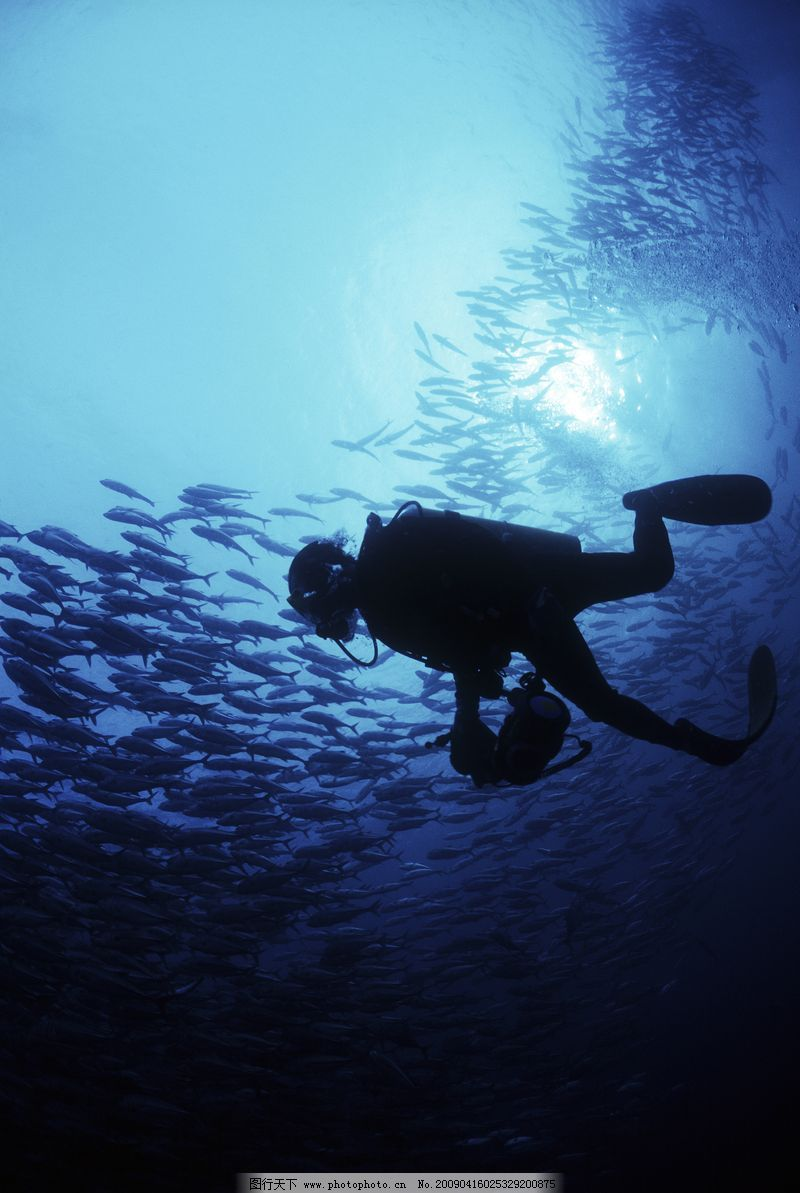 深海动物0037
