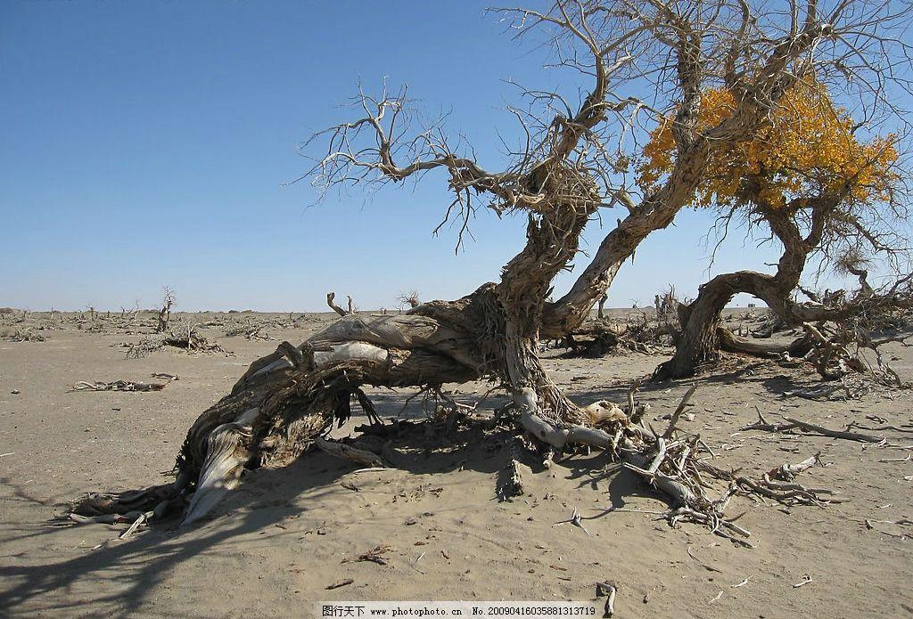 新疆沙漠风景简笔画