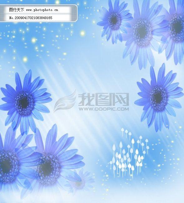 花纹 花纹免费下载 菊花底纹蓝色心情 图片素材 底纹边框