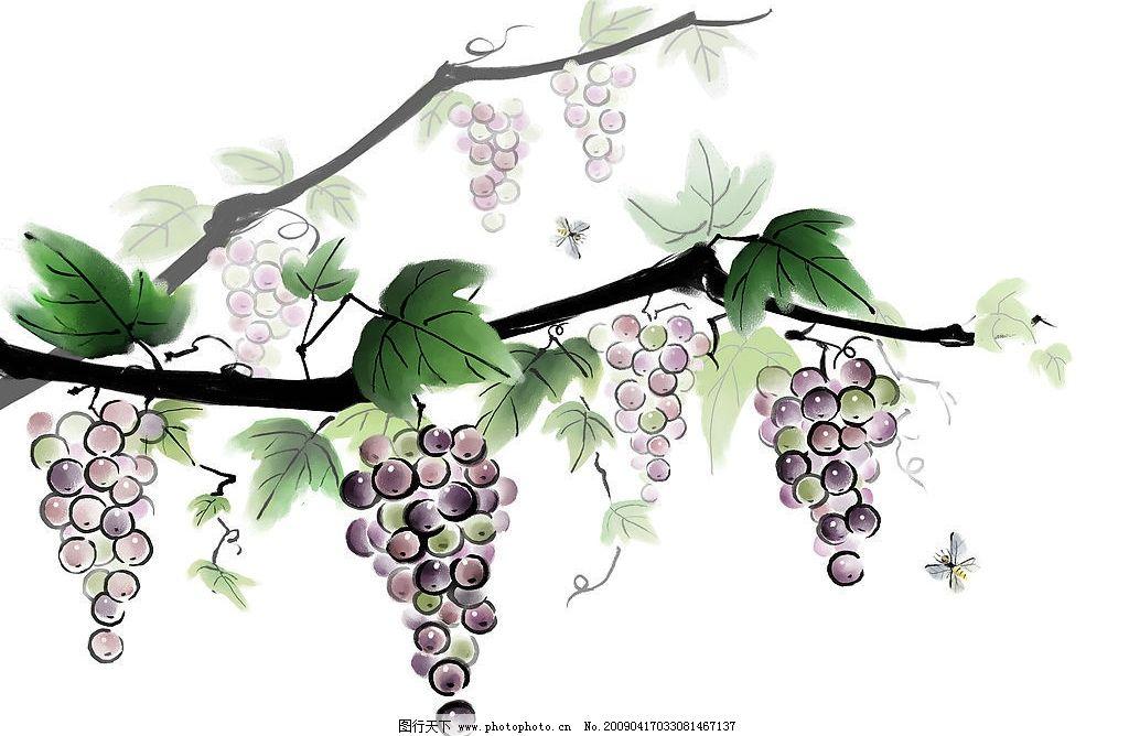 水墨葡萄 写意葡萄 葡萄 葡萄藤 紫葡萄 蜜蜂 水墨 写意 国画 分层