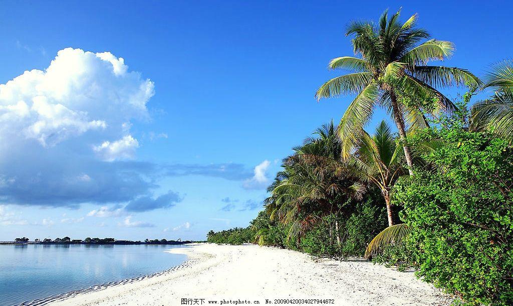 马尔代夫海滩 马尔代夫 天堂岛 阳光 海滩 沙滩 大海 椰树 旅游摄影
