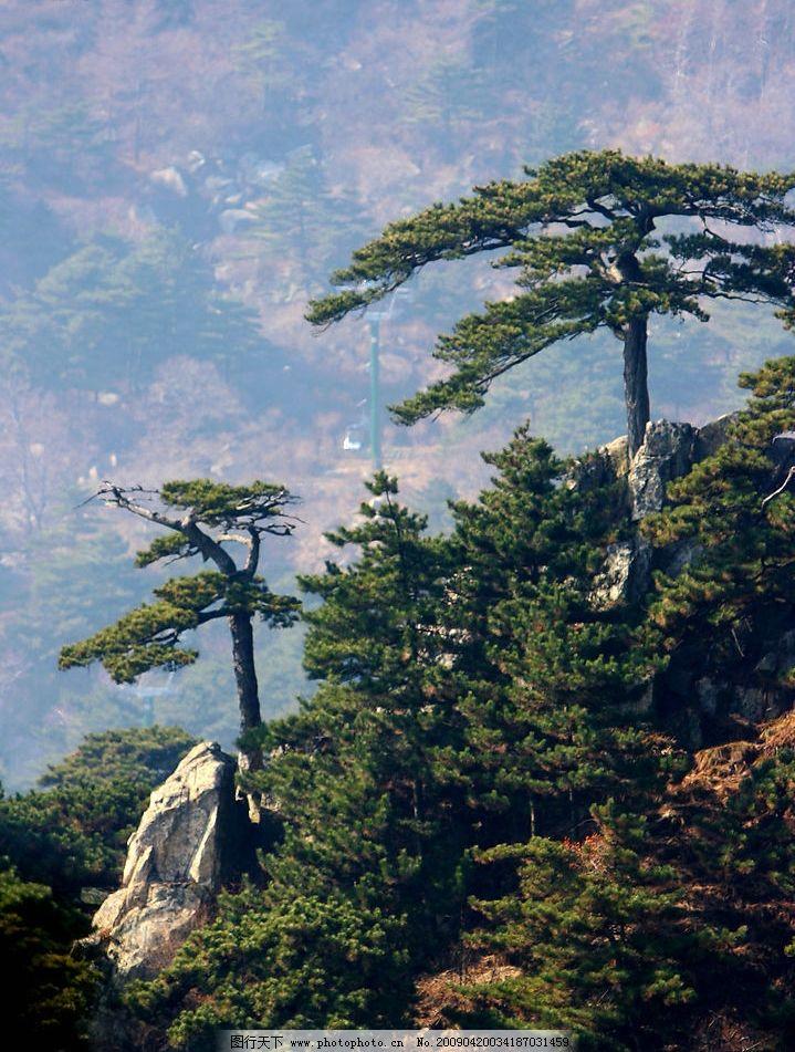 泰山风景区图片