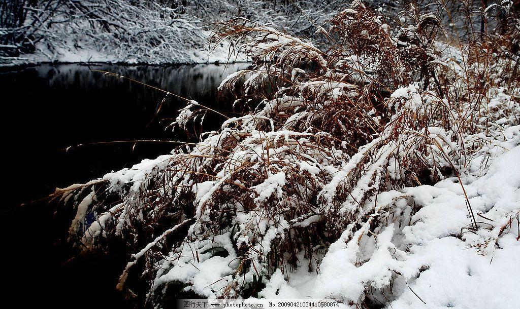 巴兰河雪景 巴兰河 雪 景 自然景观 山水风景 摄影图库 72dpi jpg
