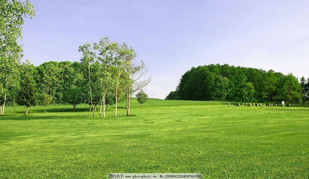 绿地 草地 绿色 环境 绿化 蓝天 天空 树木 树林 自然景观 自然风景