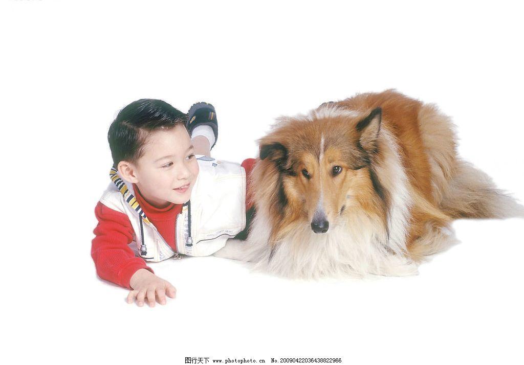 可爱幼童 男孩 活泼 眼神 宠物狗 笑容 人物图库 儿童幼儿 摄影图库