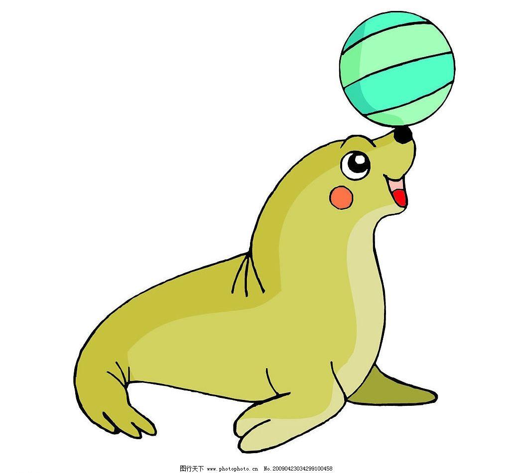 海豹 生物世界 海洋生物