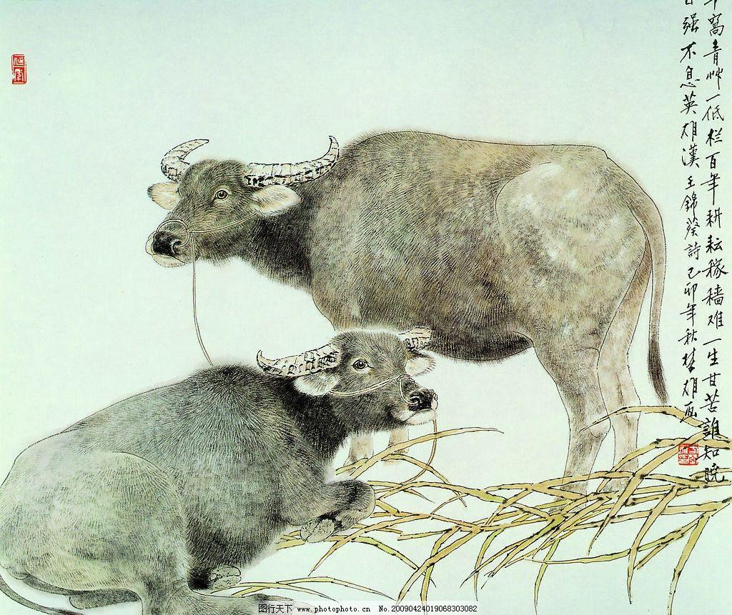 十二生肖之牛 动物画集 书法 印章 背景 风景 水牛 草 文化艺术 绘画