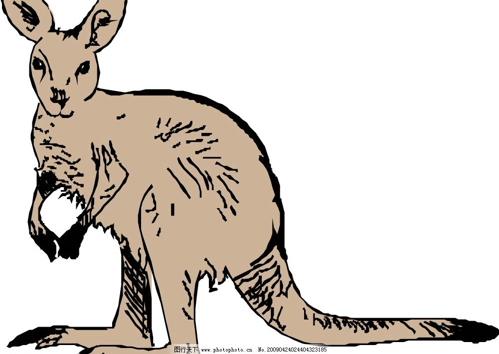袋鼠卡通图图片