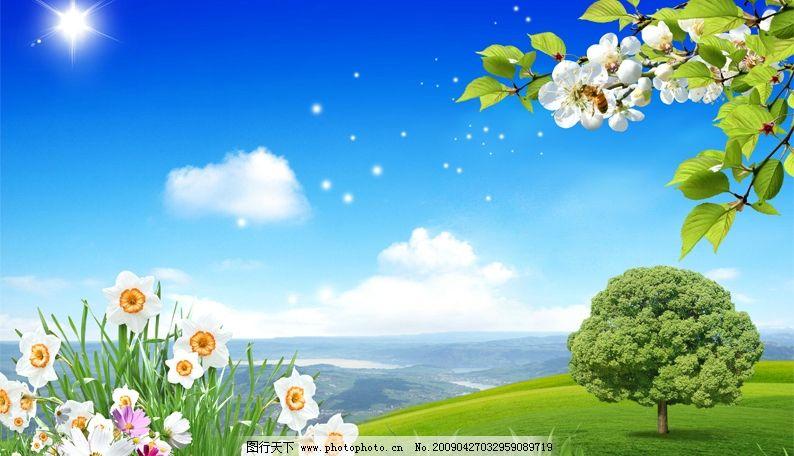 风景花草树木 风景 花草树木 蓝天白云 大树 草地 海洋 太阳光 psd