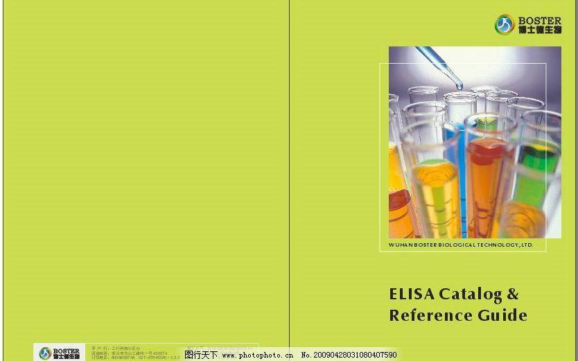 封面设计 版式 画册封面 广告封面 生物封面 简单封面 美式封面