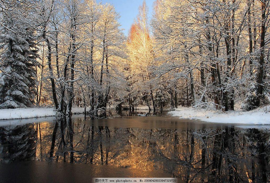 下雪的世界 雪树 旅游摄影 国内旅游 摄影图库 300dpi jpg