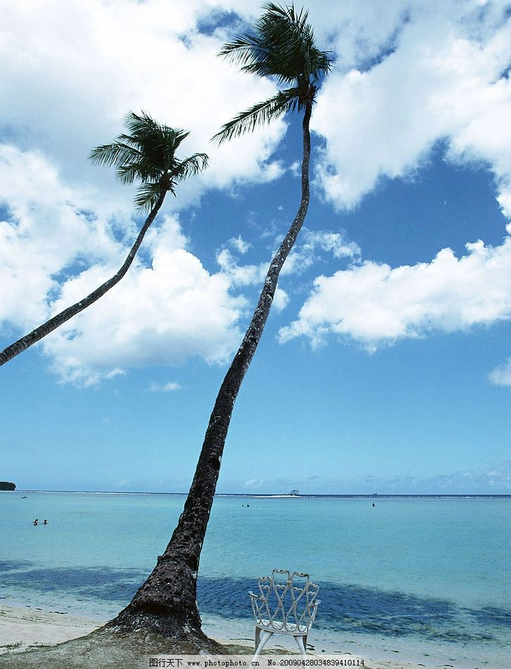 海边椰树 椰树 蓝天 白云 海平面 大海 椅子 游人 自然景观 自然风景