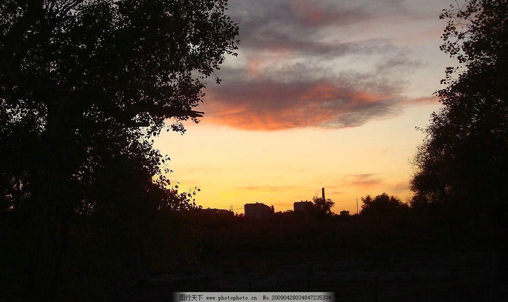 火烧云 红云 胡杨树 自然景观 自然风景 摄影图库 72dpi jpg
