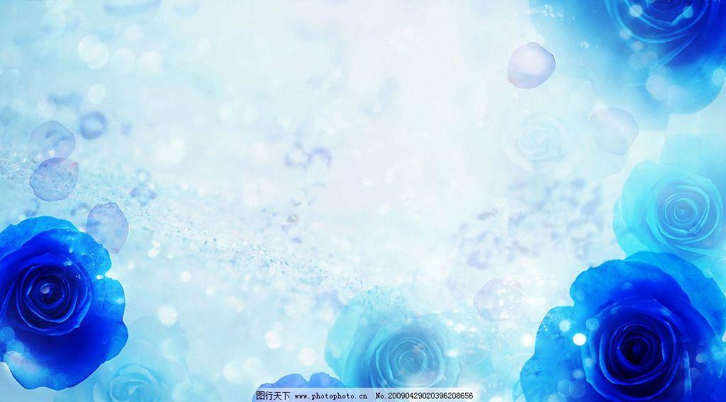 蓝玫瑰花背景 花草背景 花朵 叶子 花纹 背景 线条 底纹 花草 模板