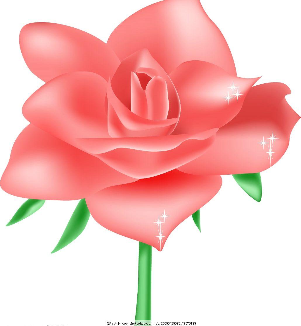 玫瑰花 花朵 其他矢量 矢量素材 矢量图库 ai 生物世界 花草