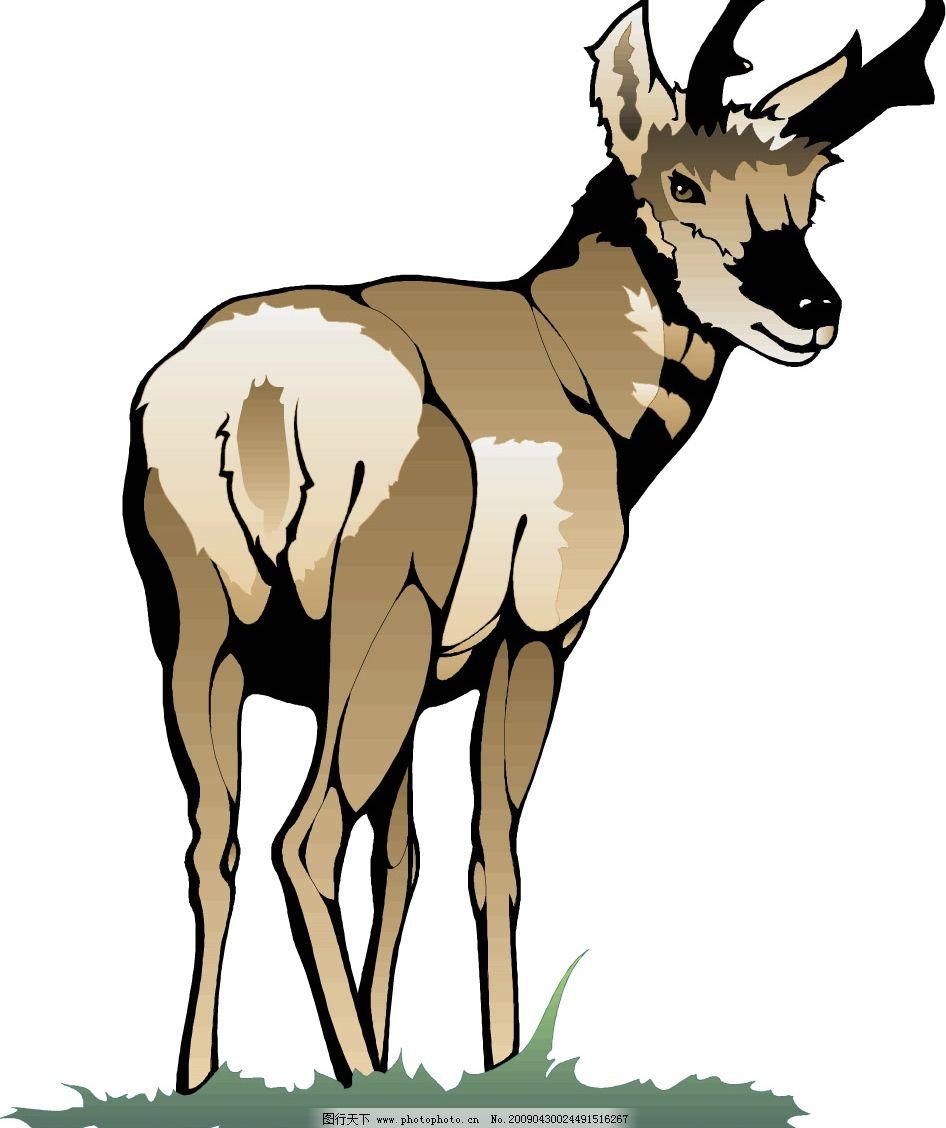 麋鹿侧面头像手绘