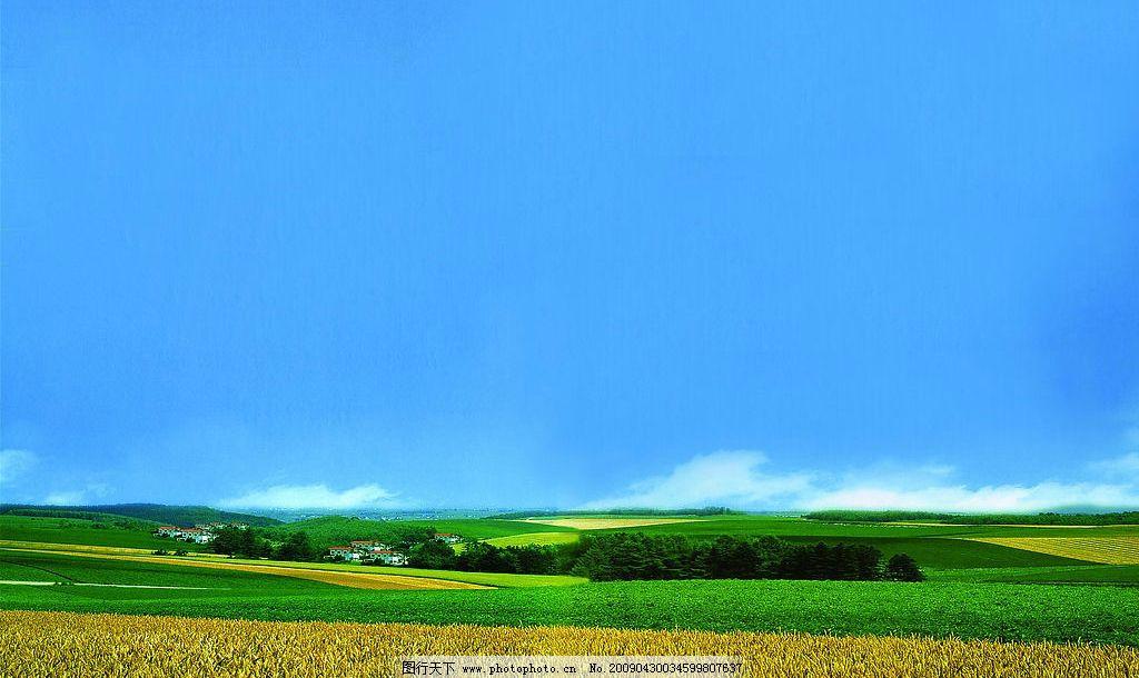 田園風光 藍天 稻谷 草地 樹木 房屋 自然風景 攝影圖庫