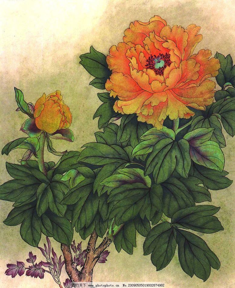 花卉画谱 工笔画线描 菊花篇 牡丹篇 近代绘画 现代会画 王永刚
