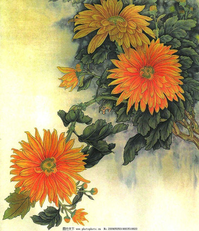 花卉画谱 工笔画线描 菊花篇 牡丹篇 近代绘画 现代会画 王永刚 国画