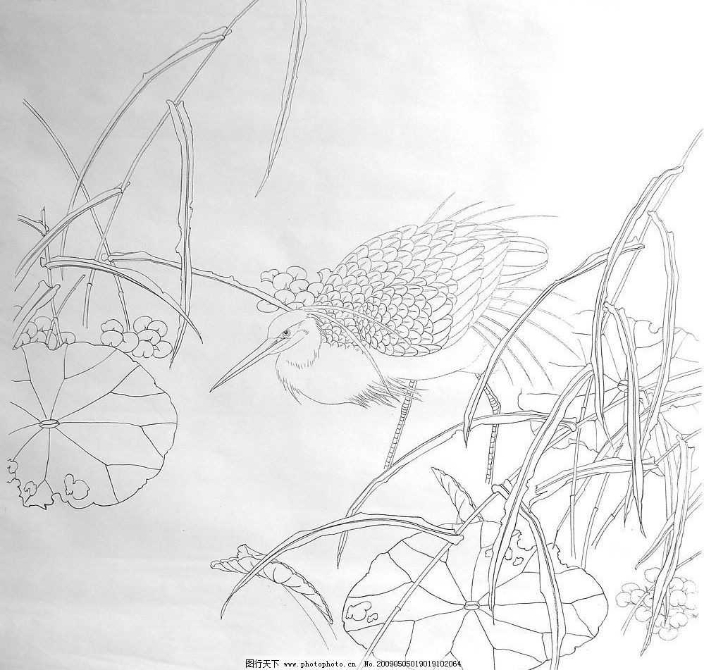 景观设计手绘线稿池塘图片