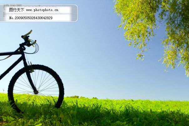 手绘风景图片唯美清新配自行车