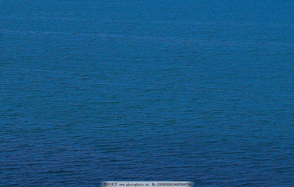 河流 大海 森林 水 浪花 海鸥 海底世界 石头 海风 水泡 波浪 海面