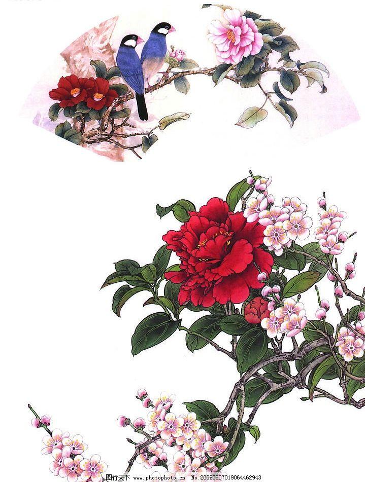 花卉画谱 工笔画线描 茶花篇 菊花篇 牡丹篇 近代绘画 现代会画