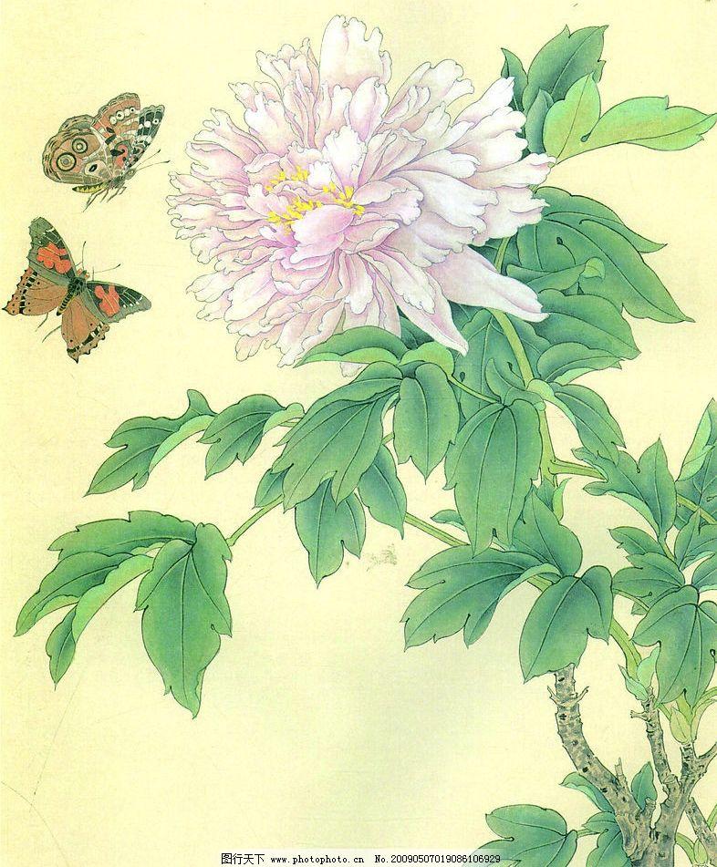 花鸟画谱 工笔画线描 茶花篇 菊花篇 牡丹篇 蝴蝶篇 近代绘画