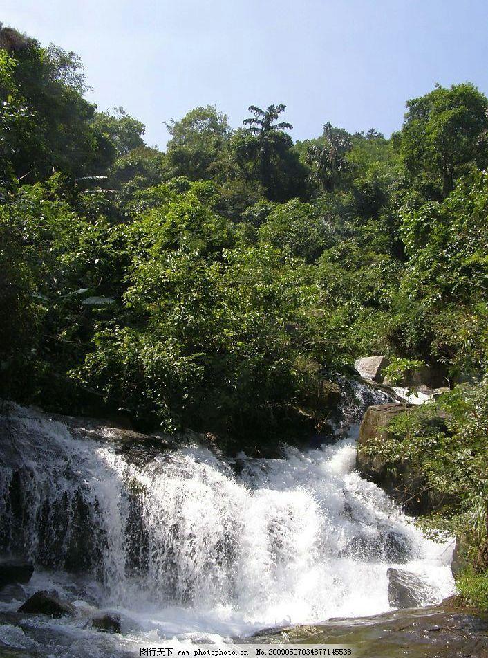 树木 流水 连州镇 蒲垌坑 山泉 瀑布 山水景色 自然景观 自然风景