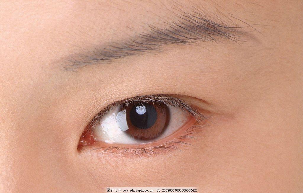 手绘图眉毛眼睛