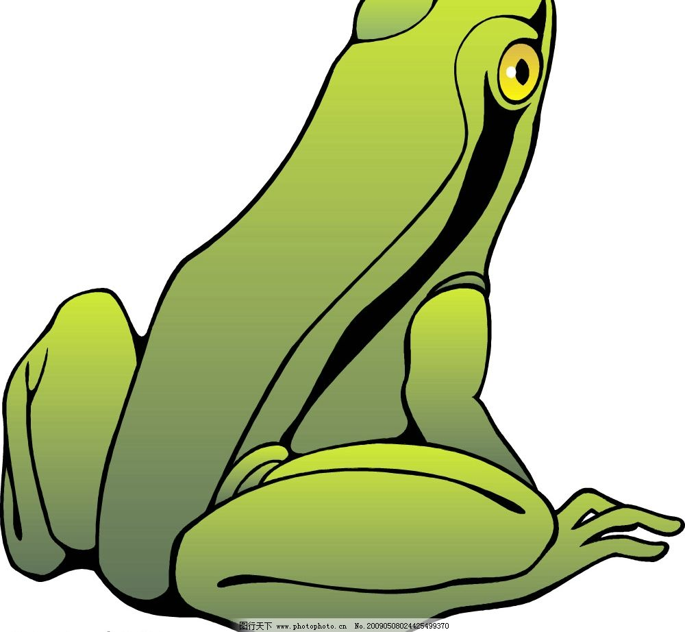 青蛙 矢量图库