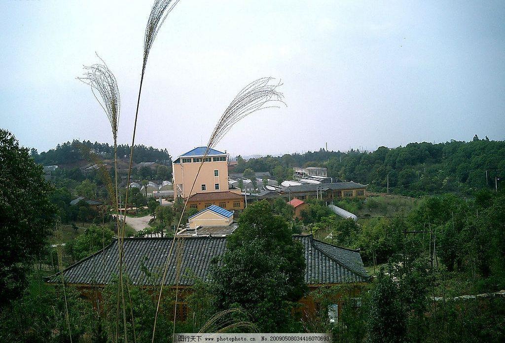 山莊風景2 山莊風景 蘆葦 樹林 藍天 山 房子 大棚 自然景觀 山水風景