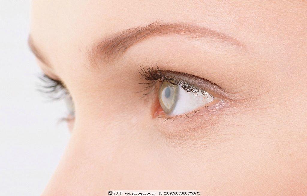 眼睛 眼睛特写 面部 女性 侧面 人物图库 女性女人 摄影图库 350dpi